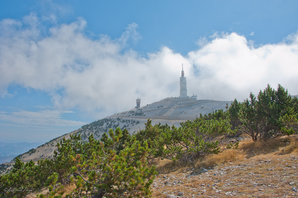 photo-mont-ventoux-vaucluse-2012-006