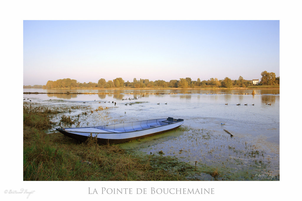 Barque à la pointe de Bouchemaine